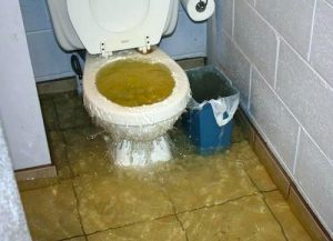 toilet clogged at dojo